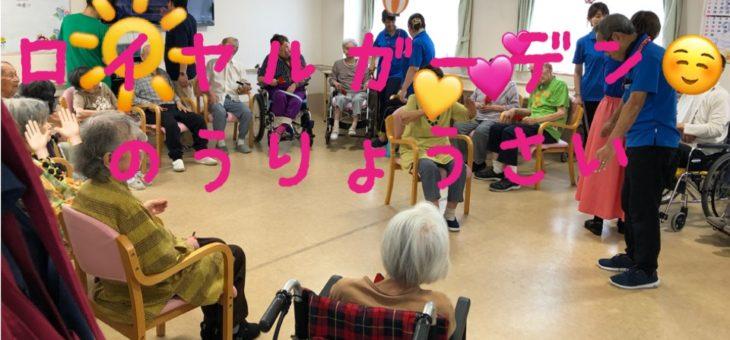 ロイヤルガーデン納涼祭(・ω・ノ)ノ☆ワッショイ♪